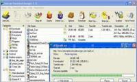 Internet Download Manager 6.08